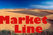 Mostly-Small-Gains-in-Wheat-Markets-on-Thursday