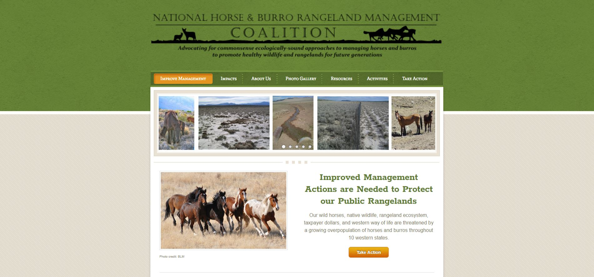 Injunction-Ordered-on-Wild-Horse-Surgical-Sterilization-Plan